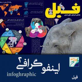 اینفوگرافیک فیل
